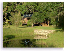 The Tree House retreat cabin is ideal for a meditation retreat. Sleeps 2 or more people; supplied with full kitchen.