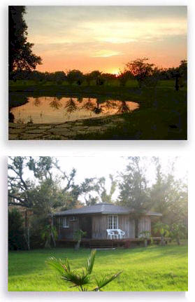 Enjoy this sunset view from the cabin for 2 by the pond while receiving Ayurveda rejuvenation treatments.